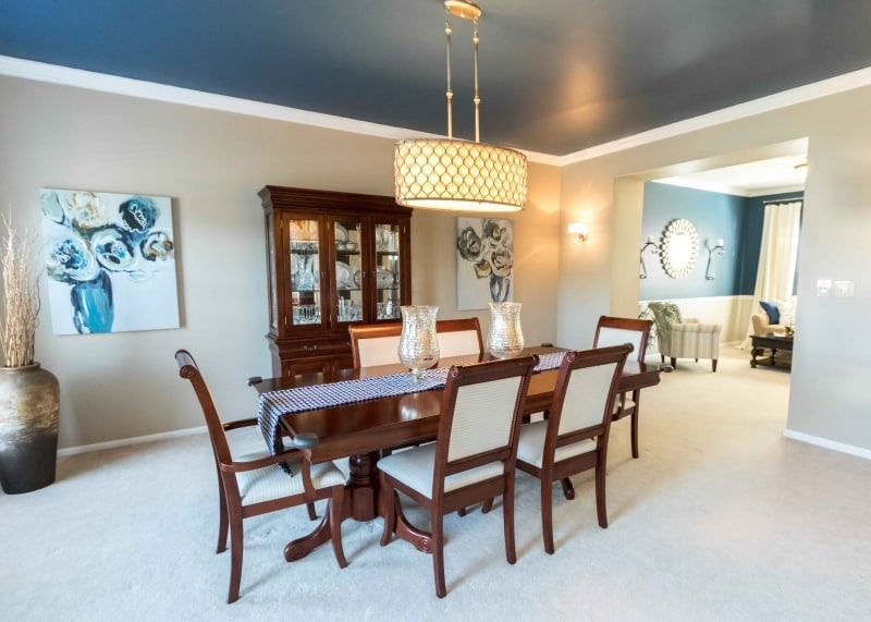 Accent Ceiling Painting Ideas